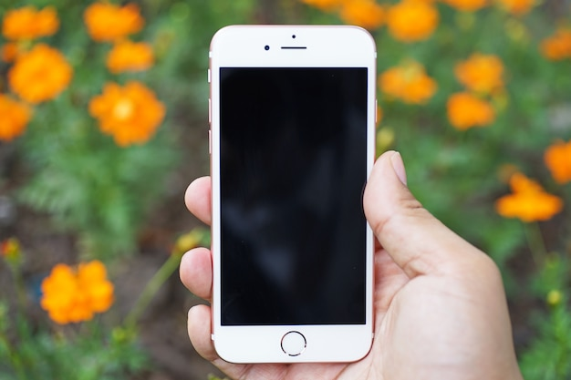 Using mobile phone or device in hand with beautiful flower on blurry beautiful flowers bac