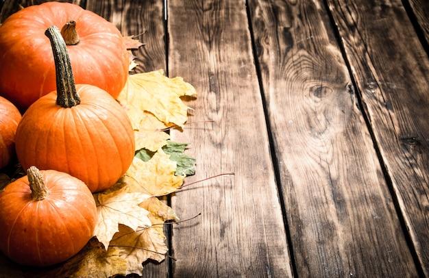 Утуменский урожай тыква с осенними листьями на деревянном столе