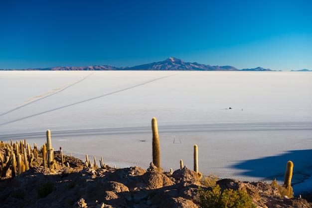 Uyuni salt flat at sunrise, travel destination in bolivia and south america.