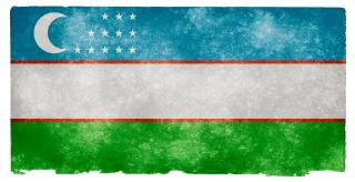 Uzbekistan grunge flag immagine
