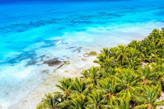 휴가 배경. 여행 개념입니다. 야자수와 청록색 물이 있는 아름다운 카리브 열대 섬의 공중 무인 항공기 보기.