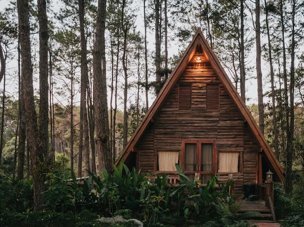 Дом отдыха в сосновом лесу