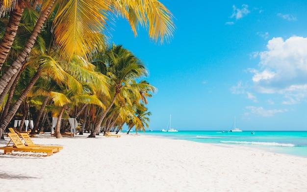 휴가 여름 휴가 배경 벽지-하얀 모래와 맑은 열대 이국적인 카리브 파라다이스 해변
