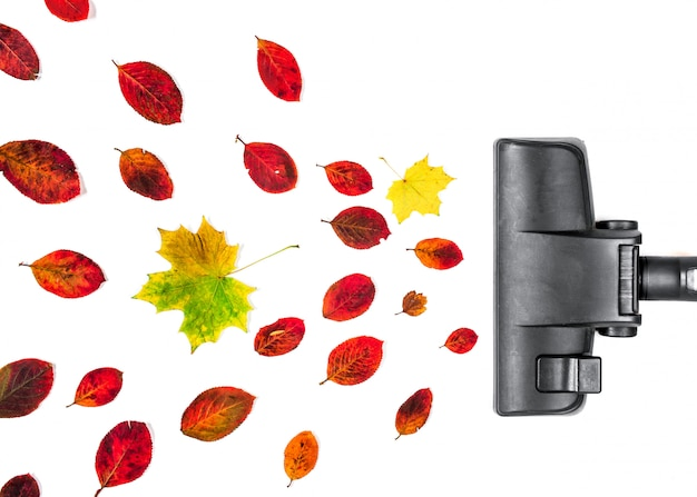 Vacuum cleaner engulf autumn leaves on isolated white