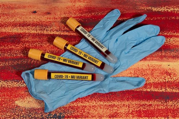 장갑 위에 covid-19 mu 변이체 테스트를 위한 혈액 샘플이 있는 진공관