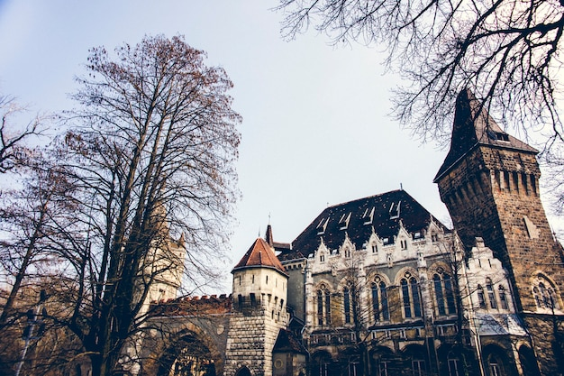 Vajdahunyad castle 및 jaki chapel, 관광객들의 역사적인 명소.
