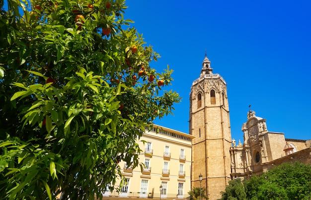 Valencia plaza de la reina square miguelete