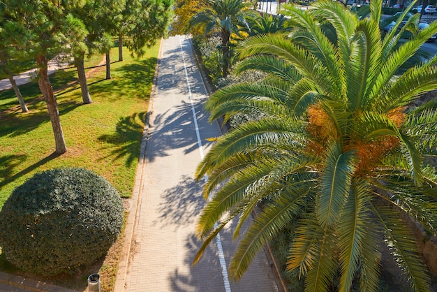 Valencia turia park gardens view at spain
