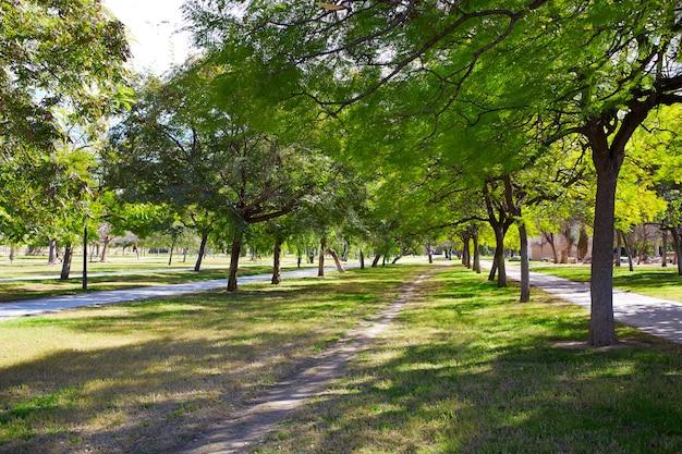 Valencia turia river park trees and tracks spain