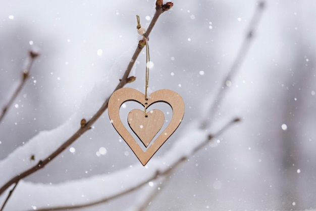 Valentine day concept: winter day and wooden heart on a tree covered with snow