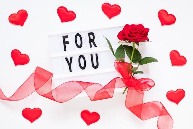 Концепция дня святого валентина свежий красный цветок розы с лентой и текстом для вас на лайтбоксе