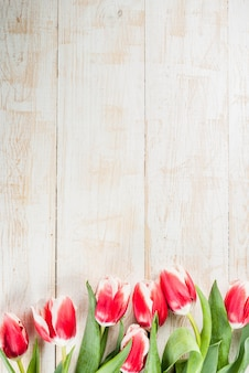 Valentines day  for congratulations, greeting cards. fresh spring tulips flowers, on white wooden  top view