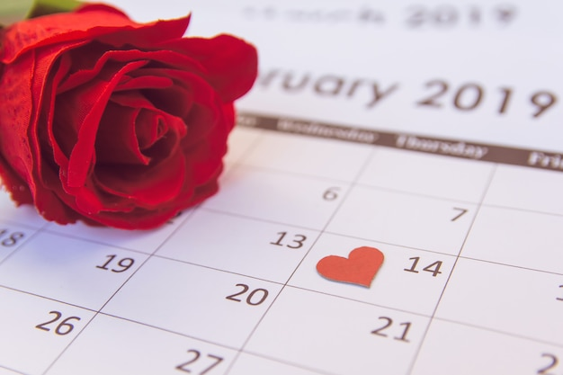 Valentines day. red rose and red hearts on calendar page february 14 with copy space