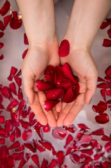 Valentines day surprise, close up woman holding red rose petals in hands