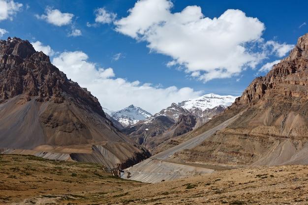 히말라야의 계곡