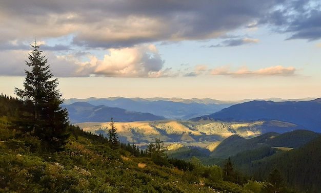 The valley between the mountains is bathed in sunlight and the mountains are covered with trees. bright clouds in the sky
