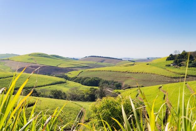 南アフリカ、ダーバンの近くの千の丘の谷
