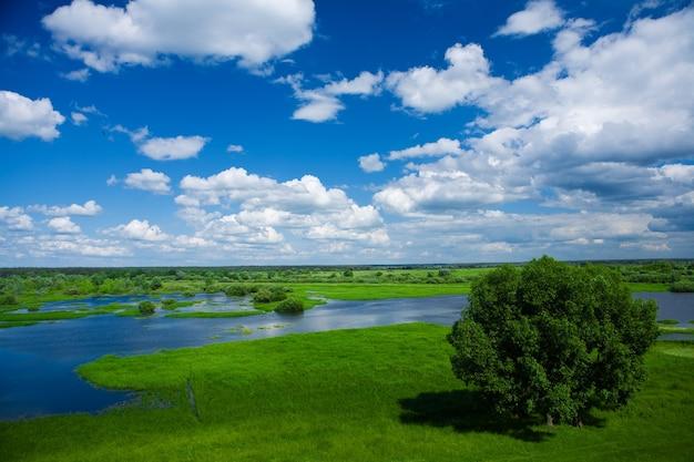 Долина реки весной