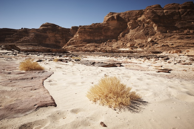 Valley in the sinai desert with mountains and sun