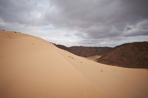 Valley in the sinai desert with sand dunes and mountains