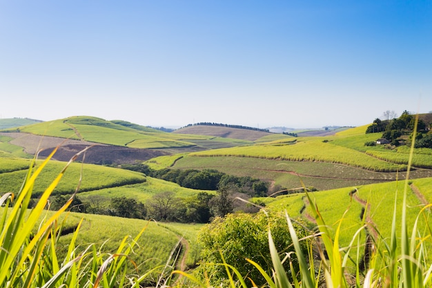 Valley of a thousand hills near durban, south africa