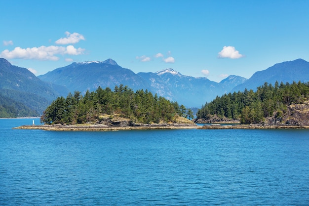 バンクーバー島。カナダ。夏の美しい晴れた日。