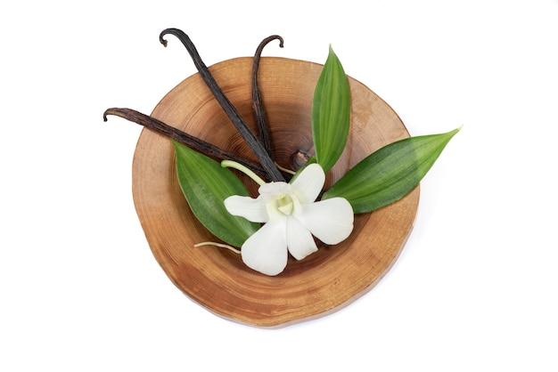 Зеленые листья ванили и сушеные стручки, изолированные на белом фоне