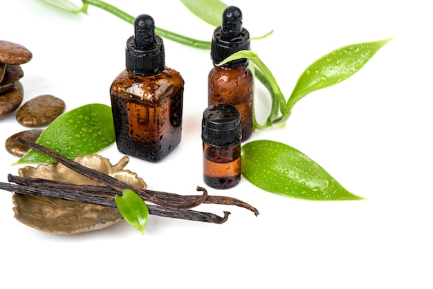 Vanilla green leaves ,dried pods and essential oil isolated on white background.