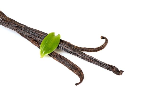 バニラ緑の葉、白い背景で隔離乾燥ポッド。