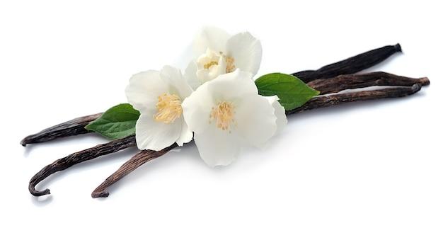 Ванильные палочки с цветами, изолированные на белом фоне