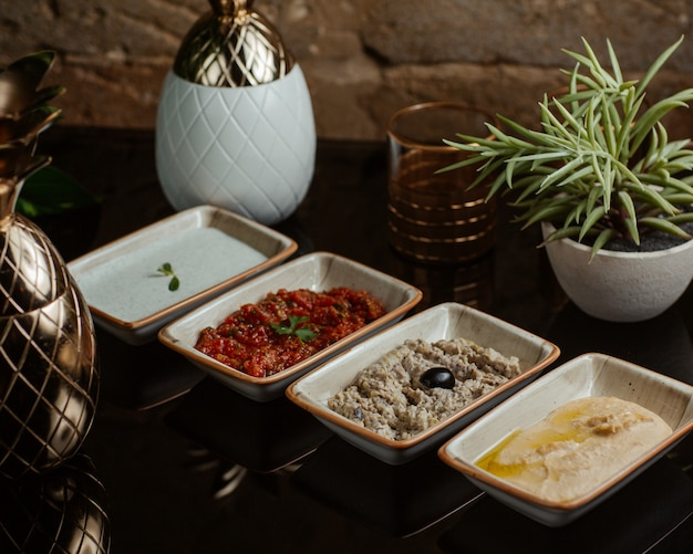 Variations of dip sauces for barbeque including yogurt tomato olive and oil sauces