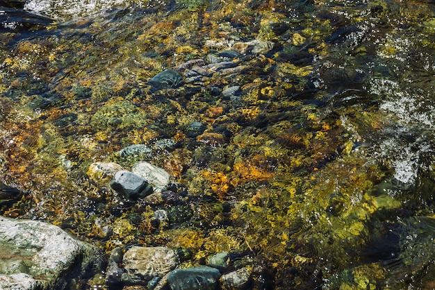 透明なマウンテンクリークの石の底の色とりどりの背景