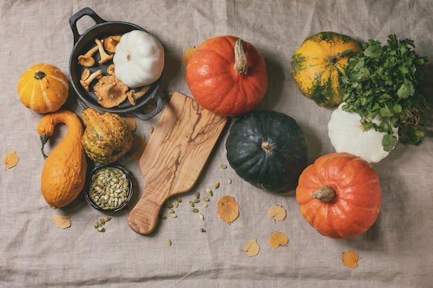Variety of colorful pumpkins