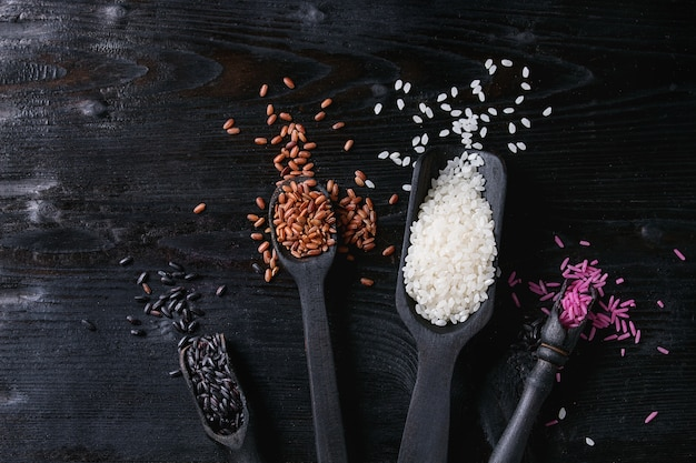 Variety of colorful rice