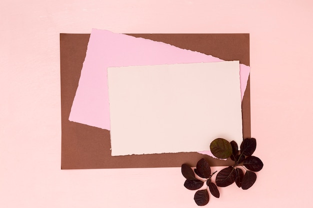 Variety of coloured papers with dried leaves