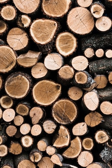 Variety of cut wooden tree trunks background