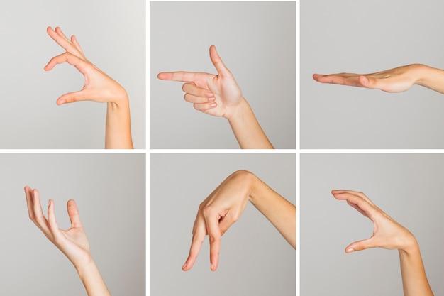 Variety of hand gestures