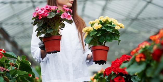 さまざまな色。温室内で2つの鍋を手に持っている作業服の女の子。