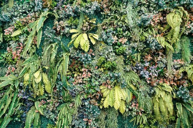 壁に装飾的な植物と緑の葉の様々な