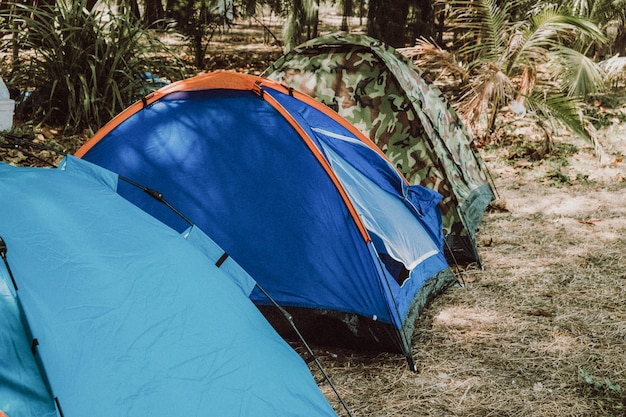 A variety of tent camping colors, camping at the sea, on the beach, good atmosphere.