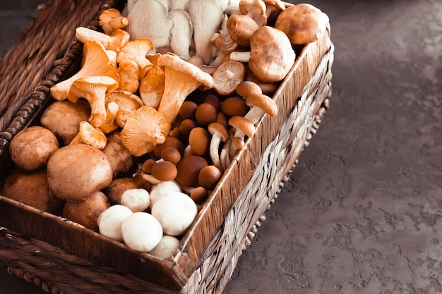 Variety of uncooked wild forest mushrooms in a wicker basket