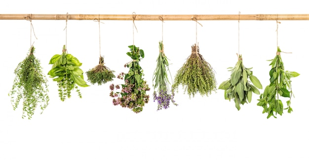 Varios fresh herbs isolated on white
