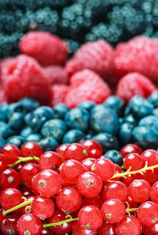 Various berries background. shallow depth of field
