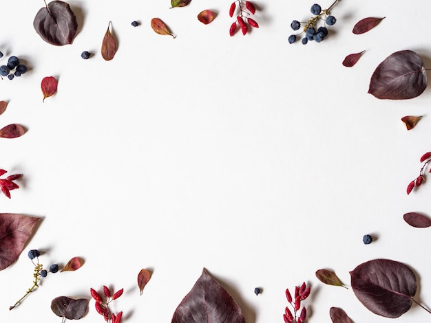 Various berries and leafs of wild trees frame isolated on white