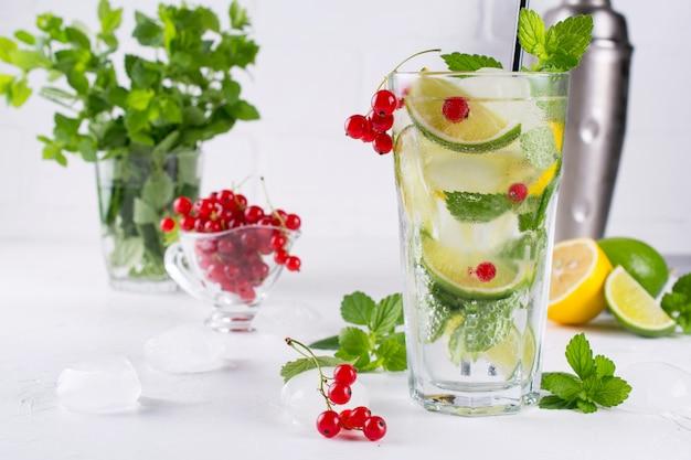 다양한 베리 레모네이드 또는 모히토 칵테일, 신선한 아이스 레몬 라임, 레드 건포도 주입 물, 여름 건강 해독 음료 밝은 배경