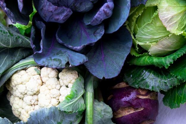 Various of cabbage broccoli cauliflower,