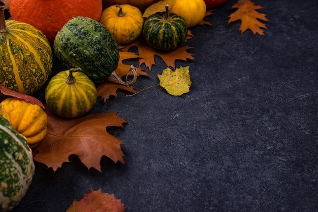 Различные декоративные тыквы и разноцветные листья
