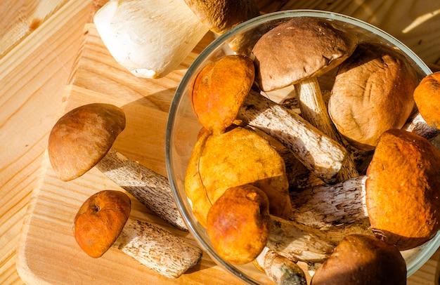 Различные съедобные грибы, собранные осенью в лесу