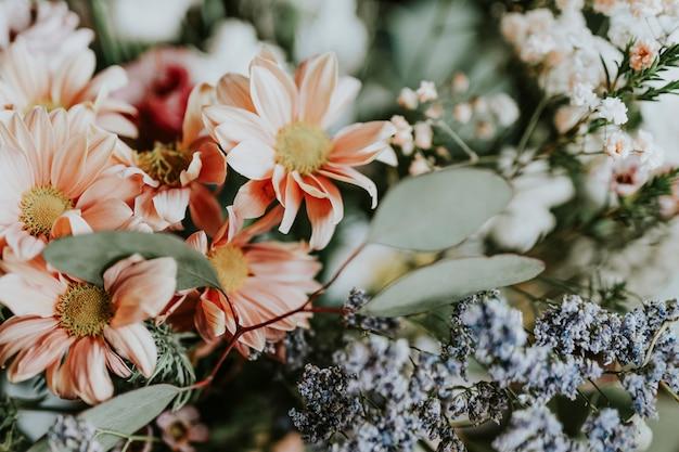Различные цветы в цветочном магазине
