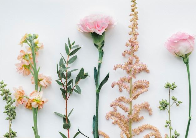 흰색 바탕에 다양 한 꽃